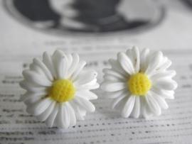"Oorstekers ""White Daisy"""