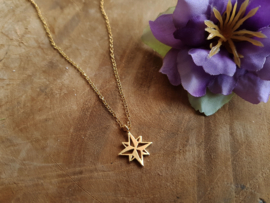 "Ster Ketting ""Morningstar"" Stainless Steel"