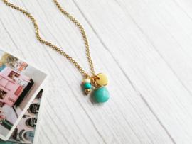 "Turquoise Edelsteen Ketting ""Precious Amazonite Stone"" Stainless Steel"