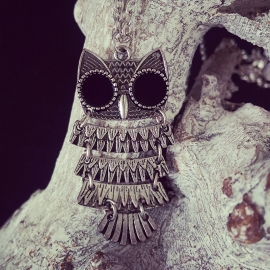 """Ketting """"Small Silver Owl"""""""