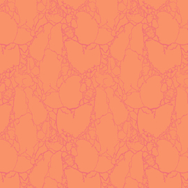 Tula Pink - PWTP100 - Stonecold Critters  - Sun Kissed