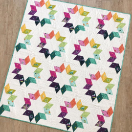 Jaybird Quilts - Cookie Cutter - patroon