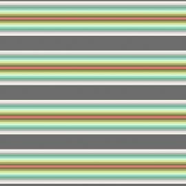 Tula Pink - PWTP082 - Tick Tock Stripe Mint