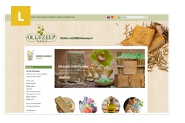 Ontwerpmijnwebwinkel-referentie-overzicht-2013_26.jpg