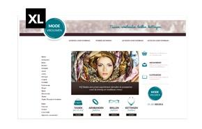 Ontwerpmijnwebwinkel-referentie-overzicht-2013_33.jpg