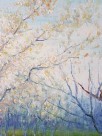 van Gogh reproductie, Bloeiende boomgaard met abrikozen Verkocht!