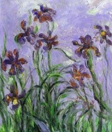 Monet reproductie, Irissen formaat 40 x 50 cm Verkocht!