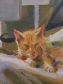 C Beaux reproductie, Man met Kat formaat 122 x 88 cm Verkocht!