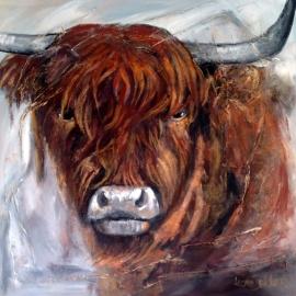 Dekker, Schotse Hooglander 3