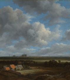 Gezicht op Haarlem uit het noordwesten met de blekerijen op de voorgrond