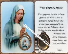 10 stuks gebedskaartje Onze Lieve Vrouwe van Banneux