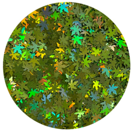 Leaves hologram no. 8