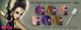 Diva Gel Lak Cat Eye 6 flesjes naar keuze+gratis Cat Eye Magneet