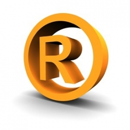 Registered Trademark and Registered Models