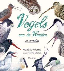 Vogels van de Wadden - 25 verhalen