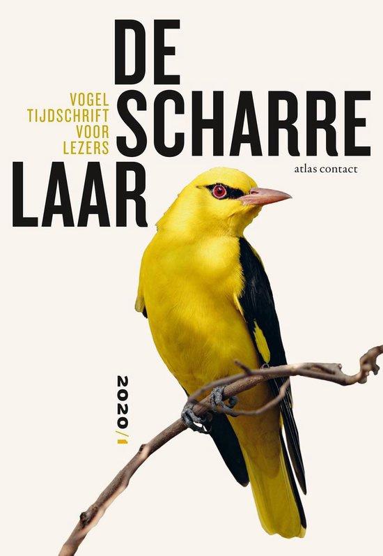 De Scharrelaar 3 - Vogeltijdschrift voor lezers 2020/1
