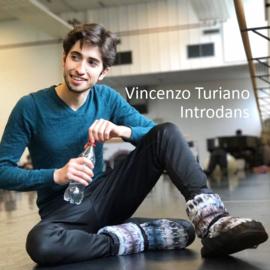 Vincenzo Turiano, Introdans