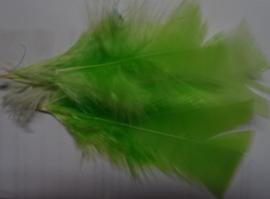 Veertjes 31 - Lemon (neon)