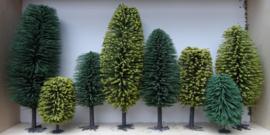 Bomen (diverse maten)