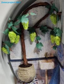 Plant: Druiventak (zelf maken)