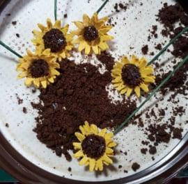 Bloemen: Zonnebloemen (zelf maken)