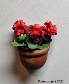 Plant: Geranium (zelf maken)