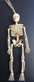 Halloween Skeletjes