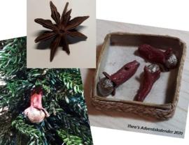 Kerstdecoratie: Kruidnagel & Steranijs - (zelf maken)