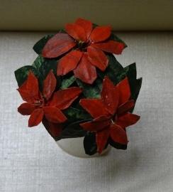 Plant: Kerstster