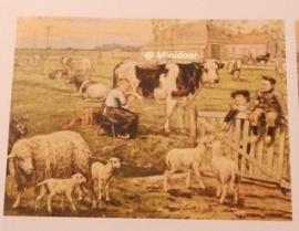 """Schoolplaat """"Boerenlandschap"""""""