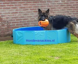 Hondenzwembad (L)