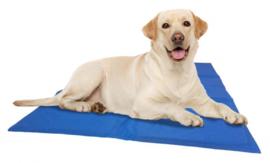 Koelmat voor honden M