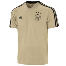 Adidas Ajax uit training shirt 2018-2019 JR