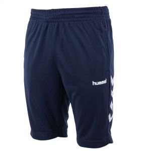 122001-7000 Hummel Authentic training short