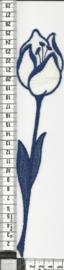 APPLICATIE  Tulp 12 stuks