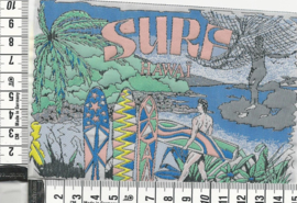 LABEL Surf Hawai 6 stuks