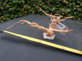 Spiderwood op steen M
