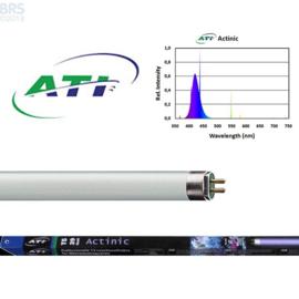 ATI  T5  TL  Actinic