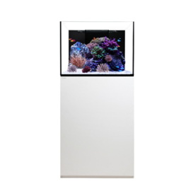 Waterbox  Platinum Reef 70.2 WIT of ZWART (60x60x55H  178 L)