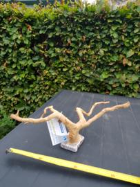 Spiderwood op steen L