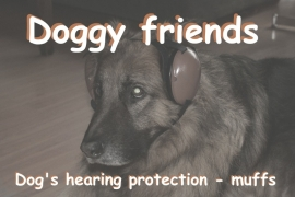 Dog's hearing protection muffs.