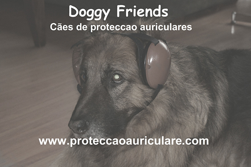 proteccao-auriculares-protetor-cães