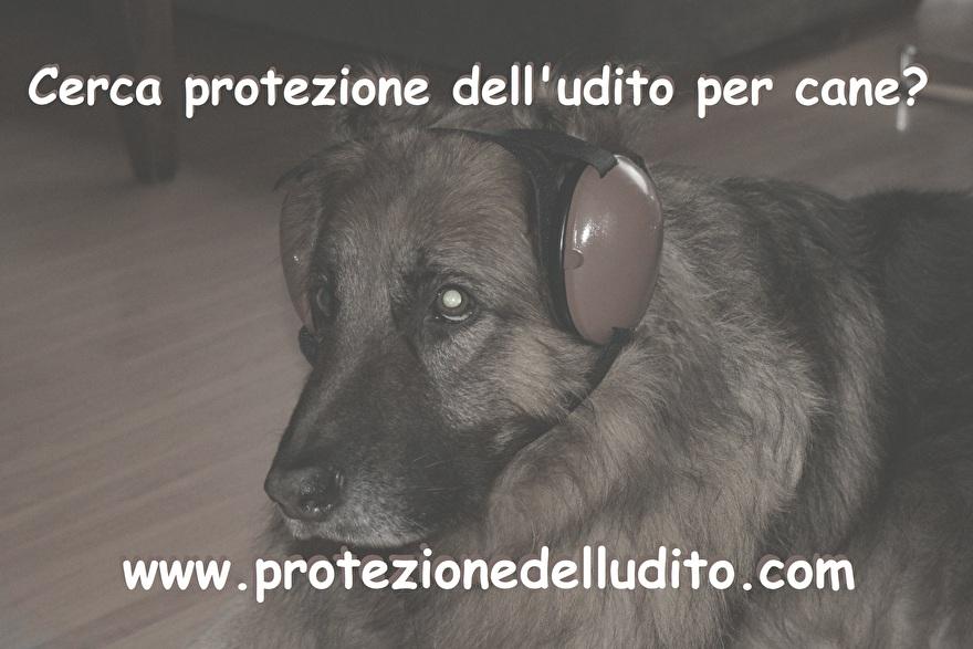 Protezione delludito per cane.