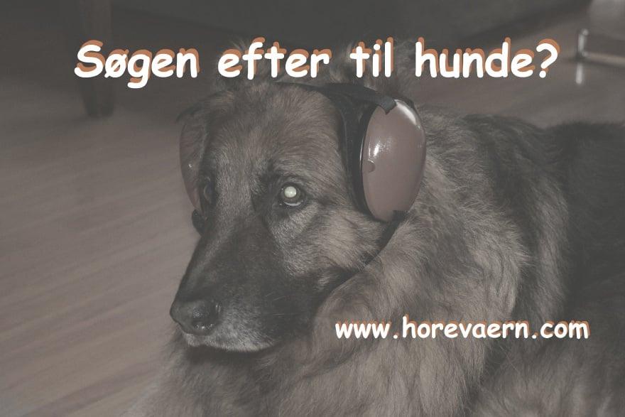 høreværn til hunde?