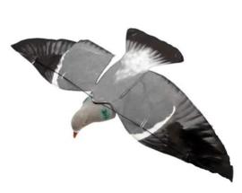 Sillosocks Pigeon Hypaflap duif