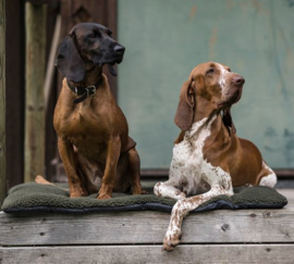 Deerhunter Dog Blanket in Fibre Pile hondendeken 100x70