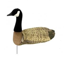 Sillosocks lokkers Canada Goose Head Up Canadese gans kijkend 12 stuks