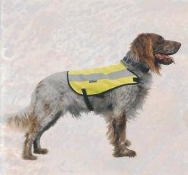 Hondenveiligheidsvest