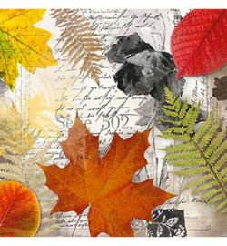 Bladeren op een brief nr. h07