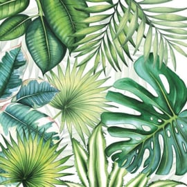 Tropical leaves nr22